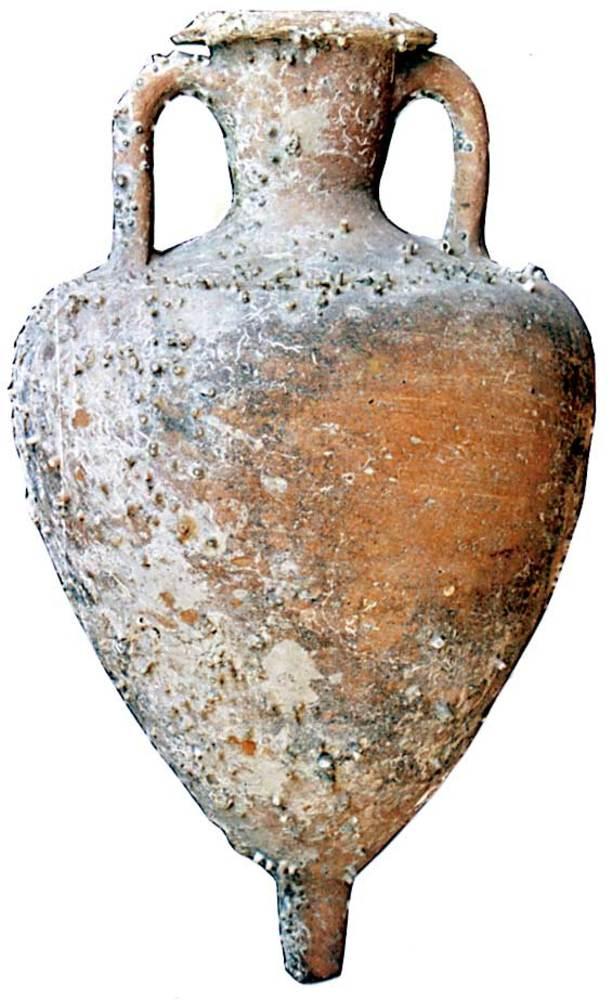 &Agrave;mfora grecoitalica Will a1, fabricada en un taller de Sic&iacute;lia o a Magna Gr&egrave;cia extreta d´un punt indeterminat del litoral de les Piti&uuml;ses. Apareix sovent als horitzons illencs d´aquesta &egrave;poca. Contengut: vi; <em>c.</em> 250-200 aC. Foto: Joan Ramon Torres.