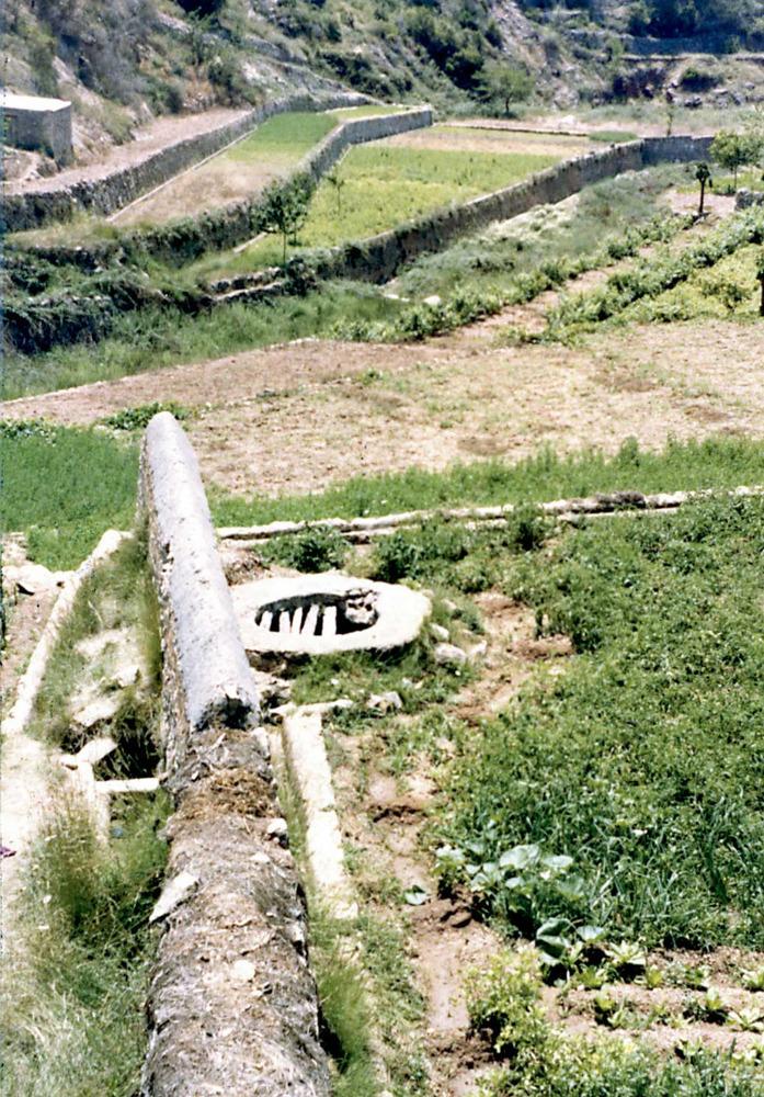 Es Amunts. El broll de Buscastell i terrasses de cultiu. Foto: Rosa Vallès Costa.