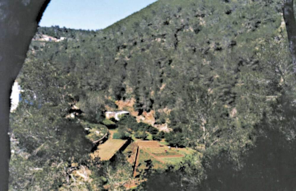 L´hort de sa Plana i la caseta del molí, al fons, a la vall de Buscastell. Foto: Felip Cirer Costa.