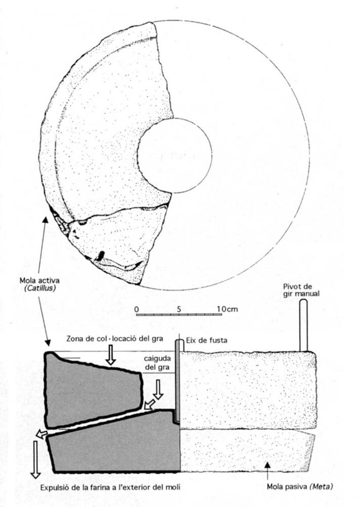 Les pallisses de Cala d´Hort. Reconstrucció d´un molí de mà per a cereals del mateix edifici (s. II aC.). Elaboració: Joan Ramon Torres / J. M. López Garí.