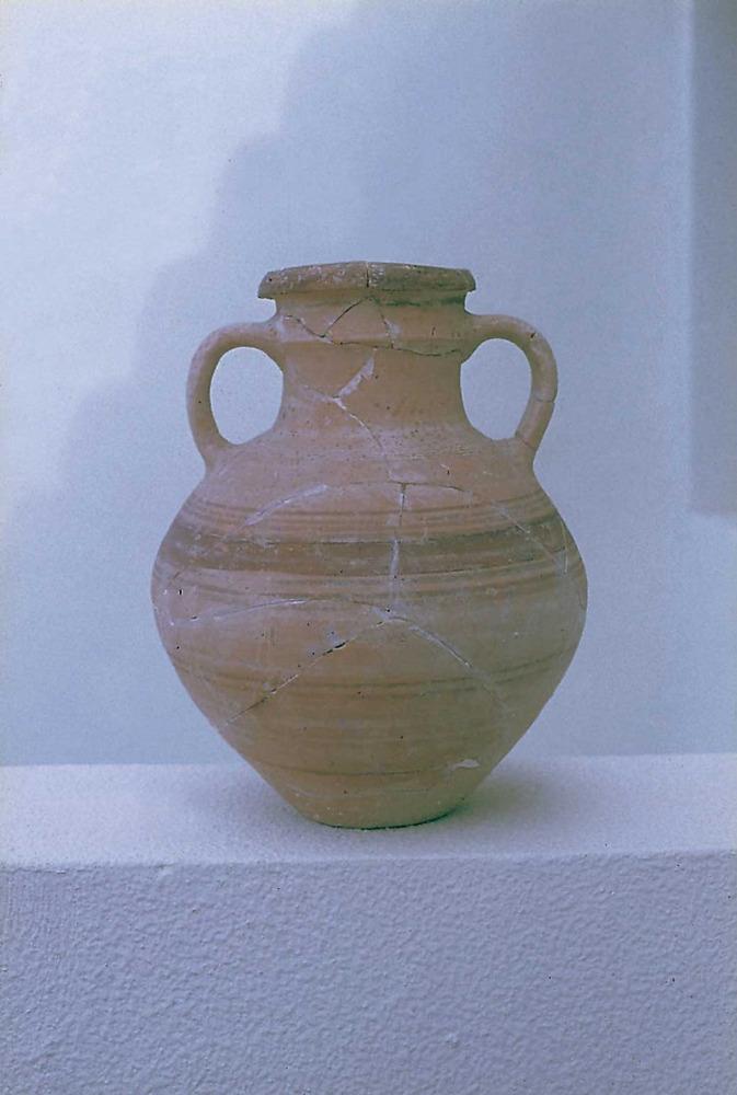 Les pallisses de Cala d´Hort. Gerra Eb. 64 (s. IV aC.) procedent de la necròpolis púnica. Foto: Joan Ramon Torres.
