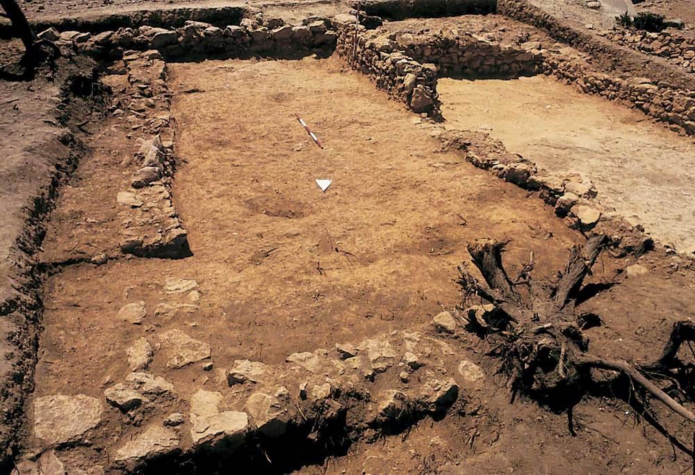 Sa Caleta. Estances XXIII i XXIV del barri central (2a meitat del s. VII aC). Foto: Joan Ramon Torres.
