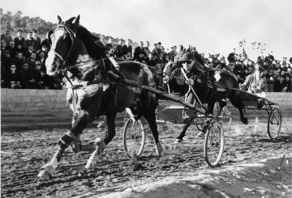 Esports. Cursa de trot durant la inauguració de l´hipòdrom de Can Bufí, el 1965.