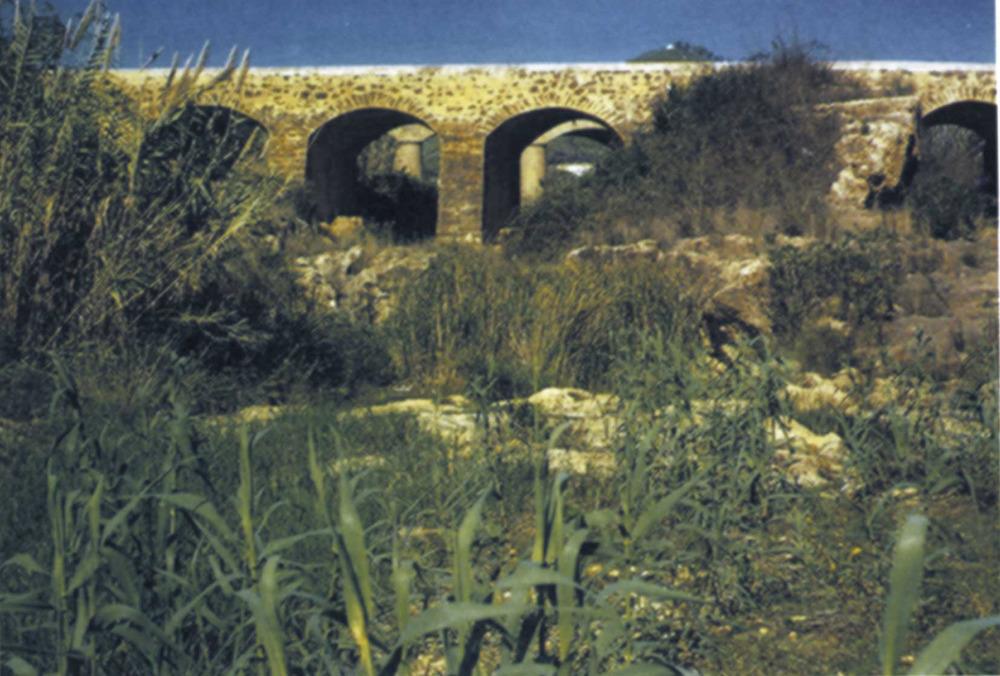 Etnografia i cultura popular. Sota el pont Vell de Santa Eulària, a mitjanit de la nit de Sant Joan, neix una floreta que s´ha d´introduir dins una ampolla fosca. Aquesta floreta es converteix en un fameliar. Foto: Joan Marí Cardona.