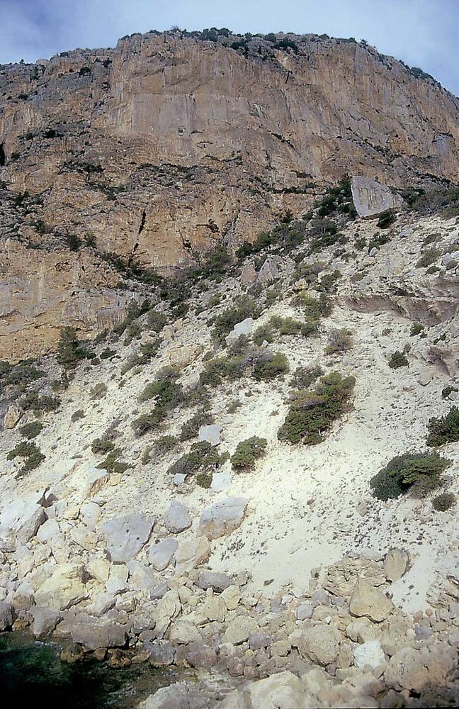 Geologia. A la dreta, calcàries massives a l´Oliva, unitat Jc. En primer terme, margues i conglomerats miocens. Foto: Xavier Guasch Ribas.