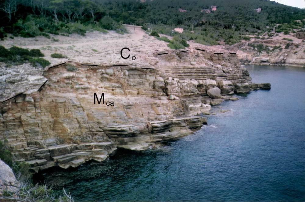 Geologia. Calcarenites miocenes (Mca) cobertes per una crosta calcària en el racó de punta Galera. Foto: Alberto Tostón Calle.