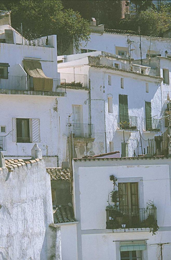 Corona d´Aragó. Una altra vista de Dalt Vila. Foto: Vicent Marí.