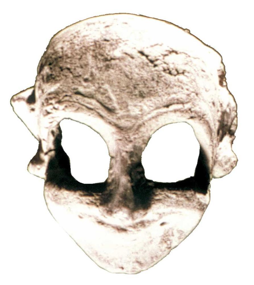 Època feniciopúnica. Màscara funerària púnica, probablement amb caràcter protector. S. V aC. Foto: cortesia del Museu Arqueològic d´Eivissa i Formentera.