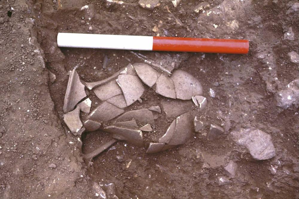Època feniciopúnica. Enterrament de cremació, datat a l´inici del s. I dC., amb les restes òssies dipositades dins d´una urna de ceràmica de tradició punicoebusitana. Foto: Benjamí Costa Ribas.