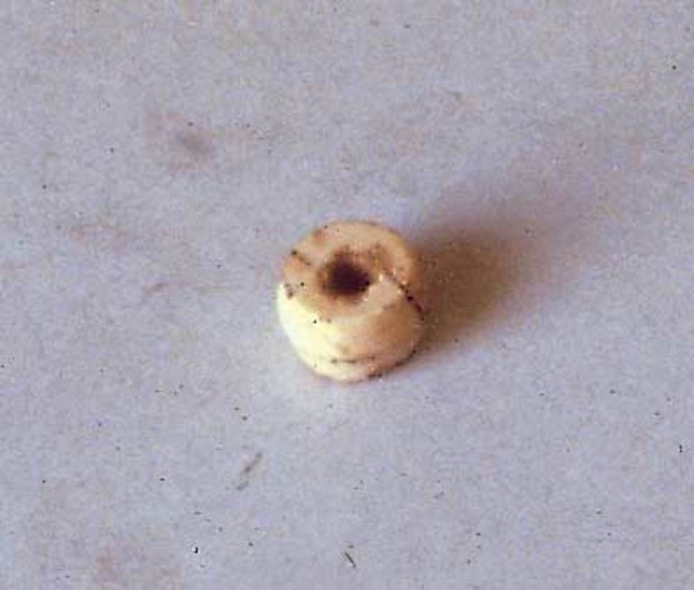 Prehistòria. Objecte trobat al nivell 3 del puig de ses Torretes: una dena de pedra polimentada datada a l´eneolític. Foto: cortesia del Museu Arqueològic d´Eivissa i Formentera.
