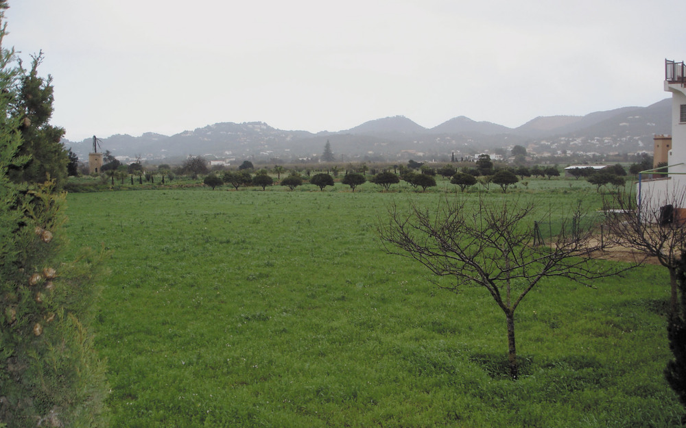 Es Puig d´en Valls. Les explotacions agràries són encara ben presents al voltant d´aquest poble. Foto: Felip Cirer Costa.