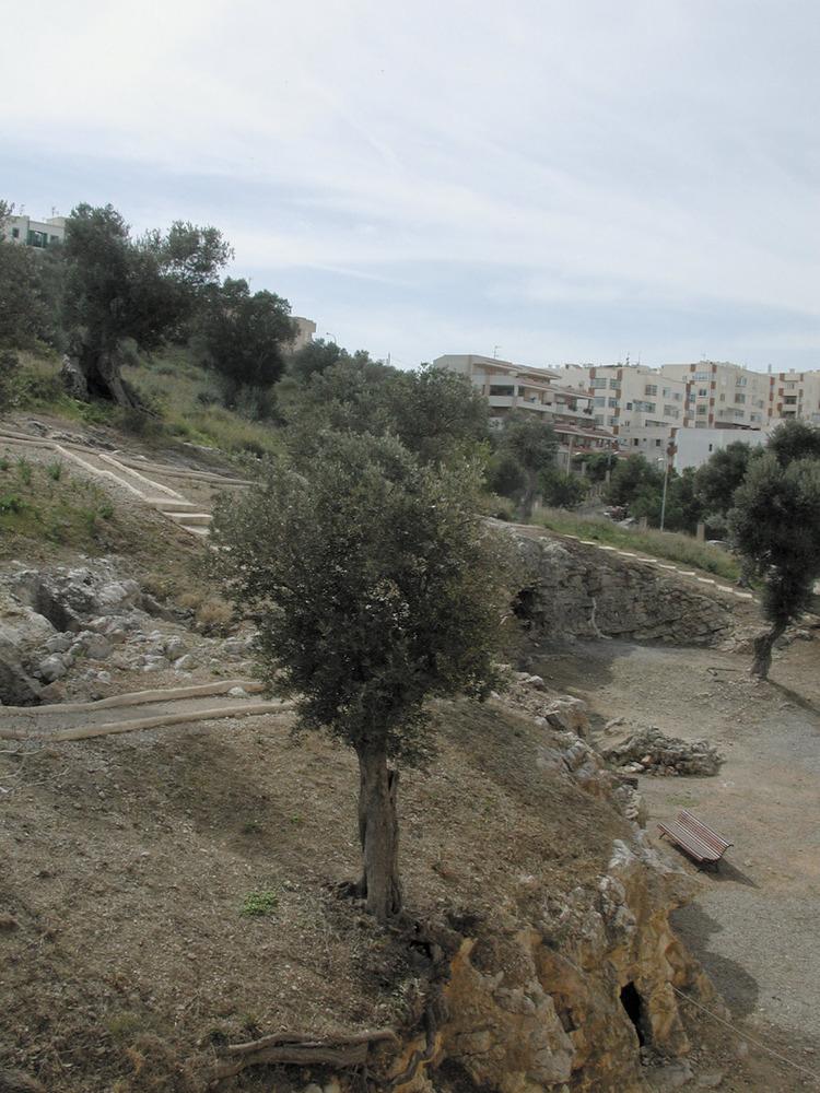 Vista parcial de la necròpolis del Puig des Molins. Foto: Museu Arqueològic d´Eivissa.