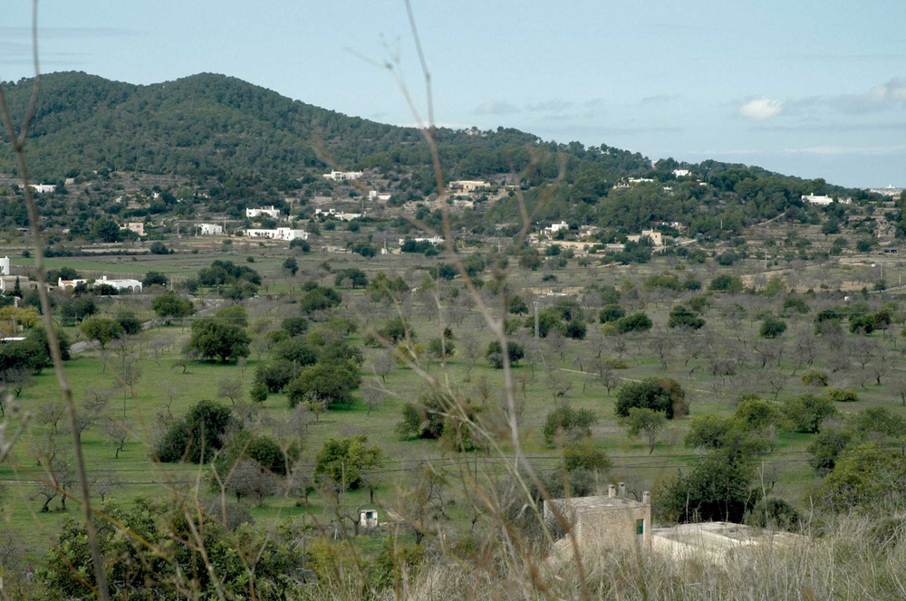 Sant Agustí des Vedrà. El poblament, dispers, segueix la tradició del camp de la resta de l´illa. Foto: Chus Adamuz.