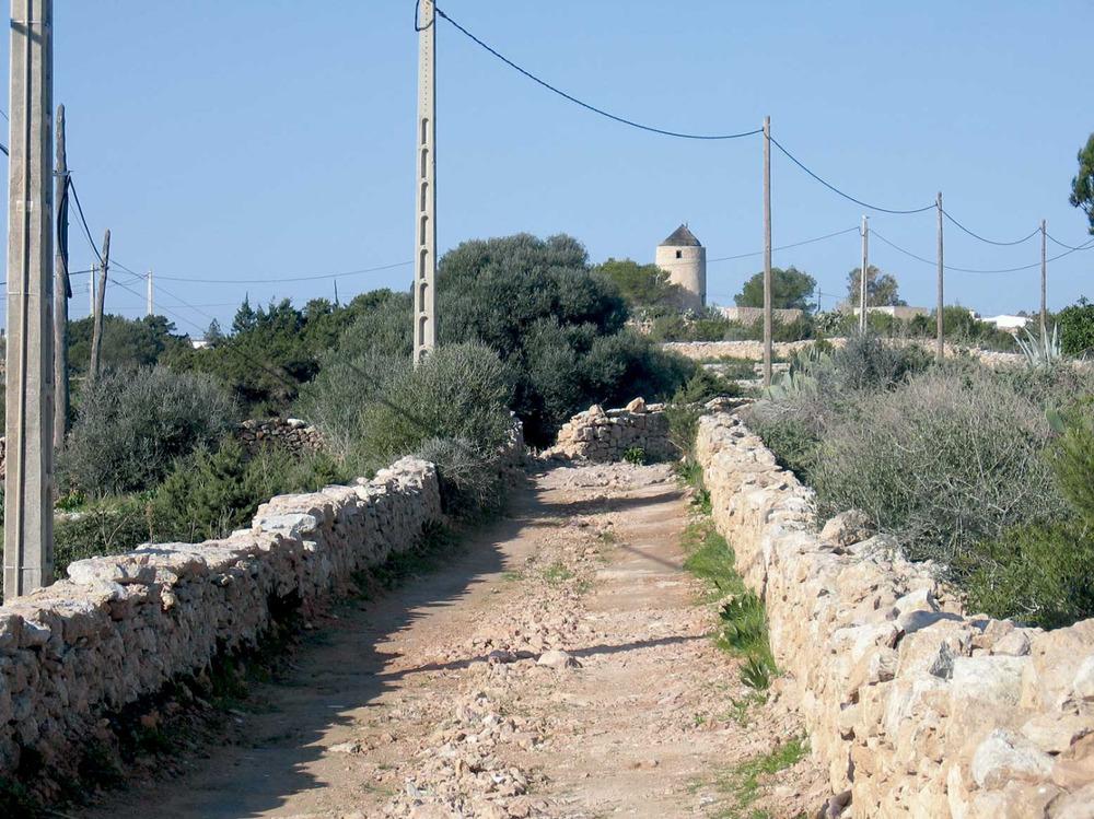El camí que marca el límit entre el poble de Sant Ferran de ses Roques i Sant Francesc Xavier. Foto: Vicent Ferrer Mayans.