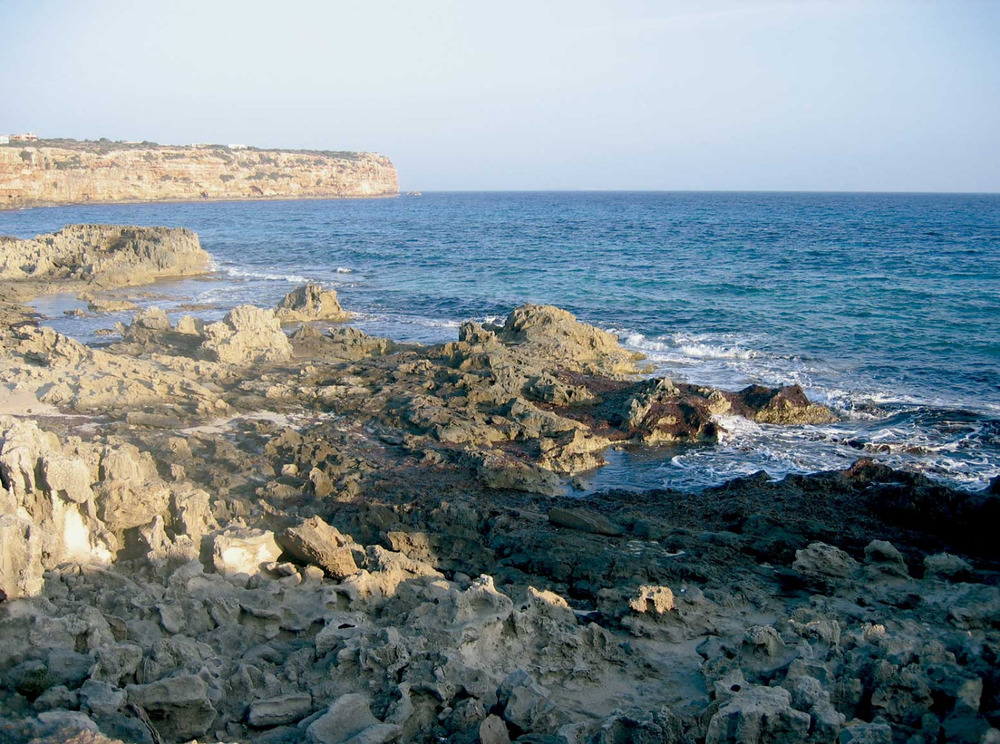 Sant Ferran de ses Roques. Indret de costa baixa des Carnatge, copnegut com es Amaradors, coassificada com a ANEI. Foto: Vicent Ferrer Mayans.