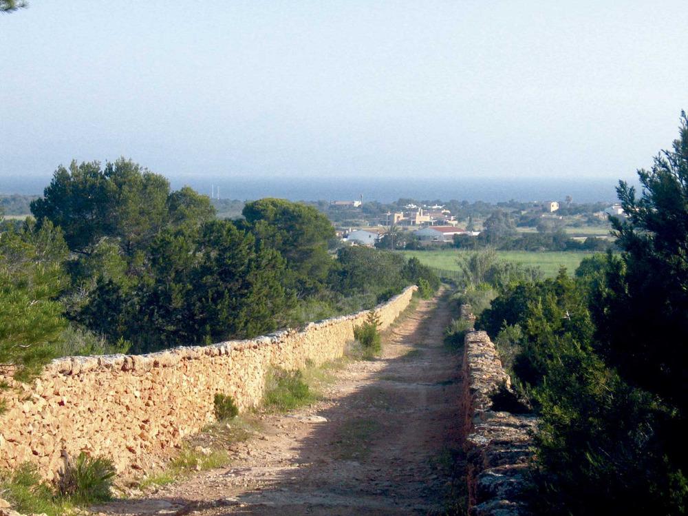 Sant Francesc Xavier. El camí de sa Roqueta, una de les principales vies històriques de la vénda de Porto-salè. Foto: Vicent Ferrer Mayans.