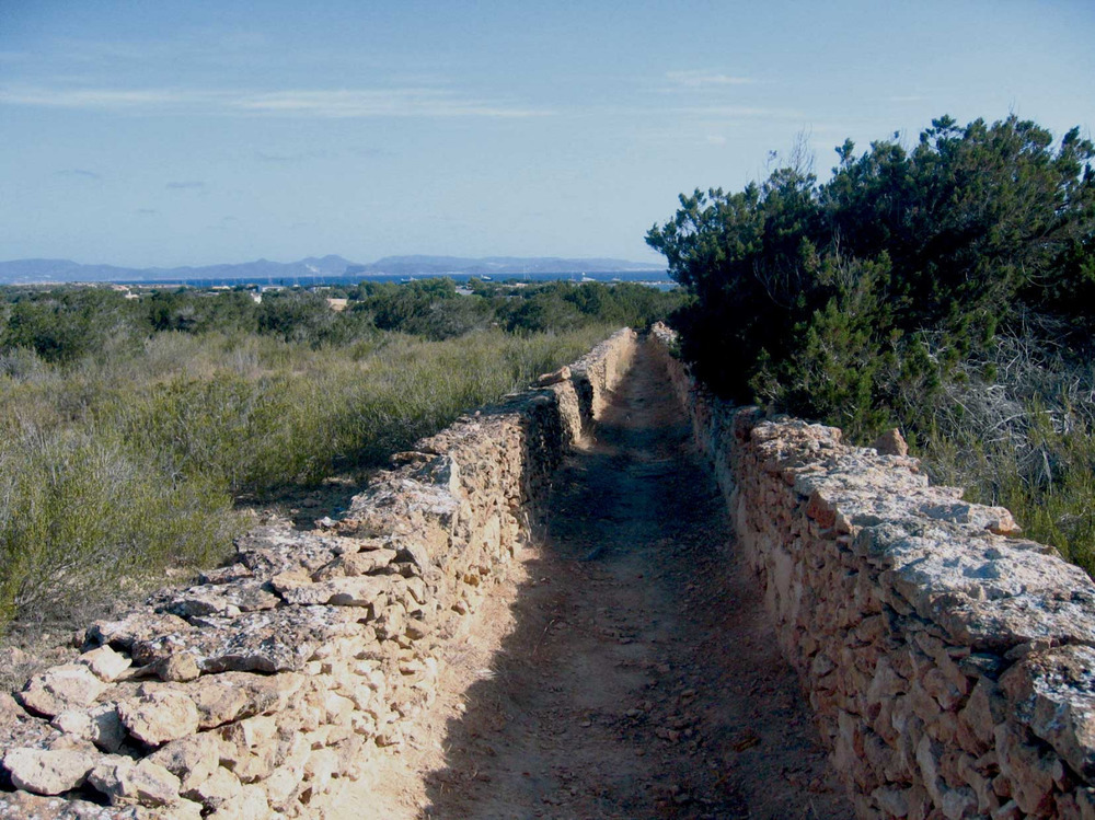 Sant Francesc Xavier. Un camí de ferradura a Porto-salè, un dels pocs que es conserven a Formentera. Foto: Vicent Ferrer Mayans.