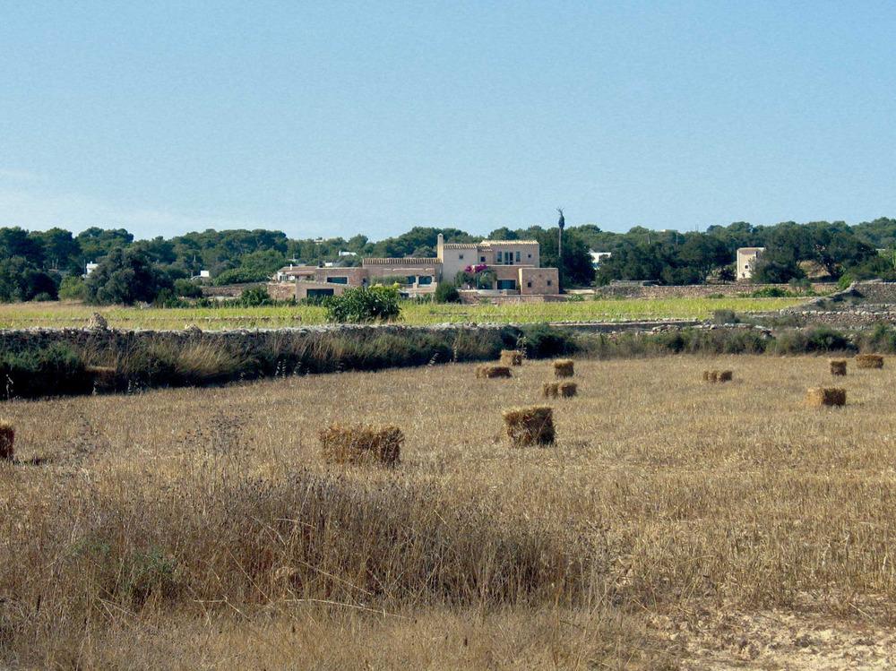 Sant Francesc Xavier. Camps de conreu de cereals a la zona de Porto-salè. Foto: Vicent Ferrer Mayans.