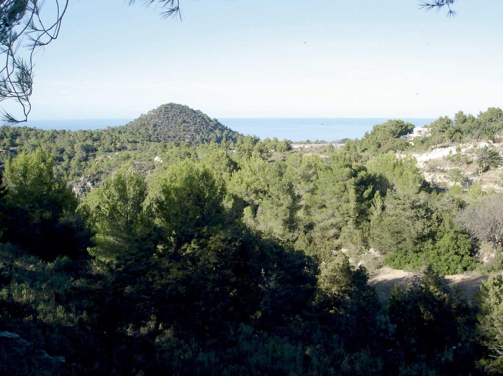 Municipi de Sant Joan de Labritja. La plana de Portinatx amb el puig de sa Descoberta al fons. Foto: EEiF.