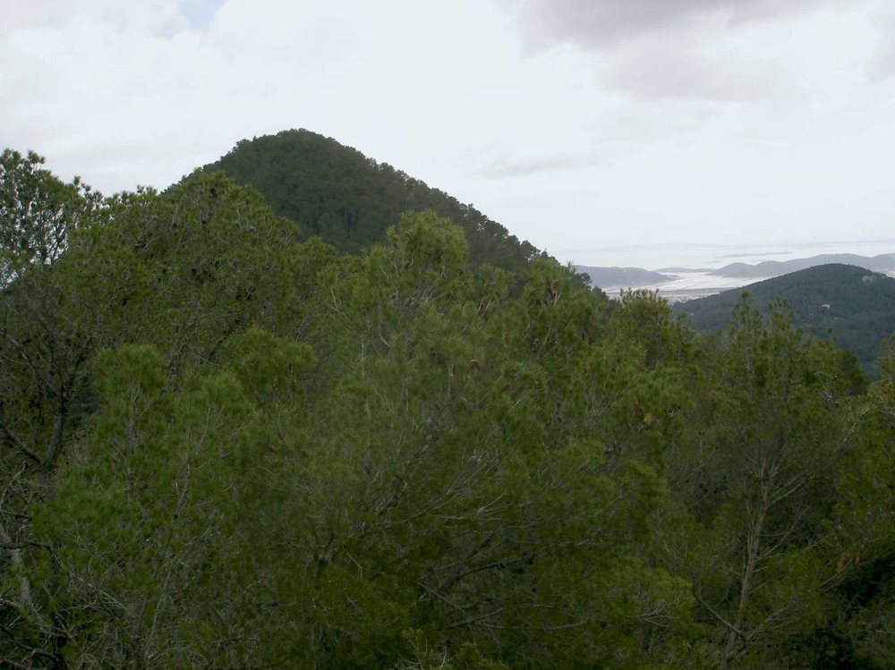 Sant Josep de sa Talaia. El puig Gros (419 m) vist des de la capella d´en Serra; al fons, els estanys de ses Salines. Foto: EEiF.