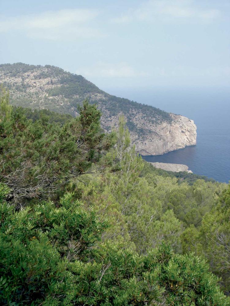Sant Mateu d´Albarca. Vista de la cala d´Albarca, amb la punta des Mossons o d´Albarca. Foto: EEiF.