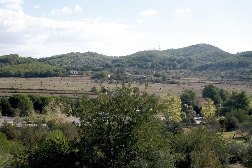 Santa Gertrudis de Fruitera. La plana d´en Guasch, amb el massís de sa Talaia de Sant Llorenç al fons. Foto: EEiF.