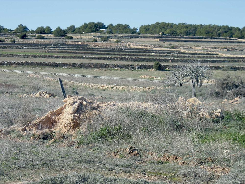 Sa Talaia de Formentera, al vessant meridional de la Mola. Foto: Pierre Bayard.