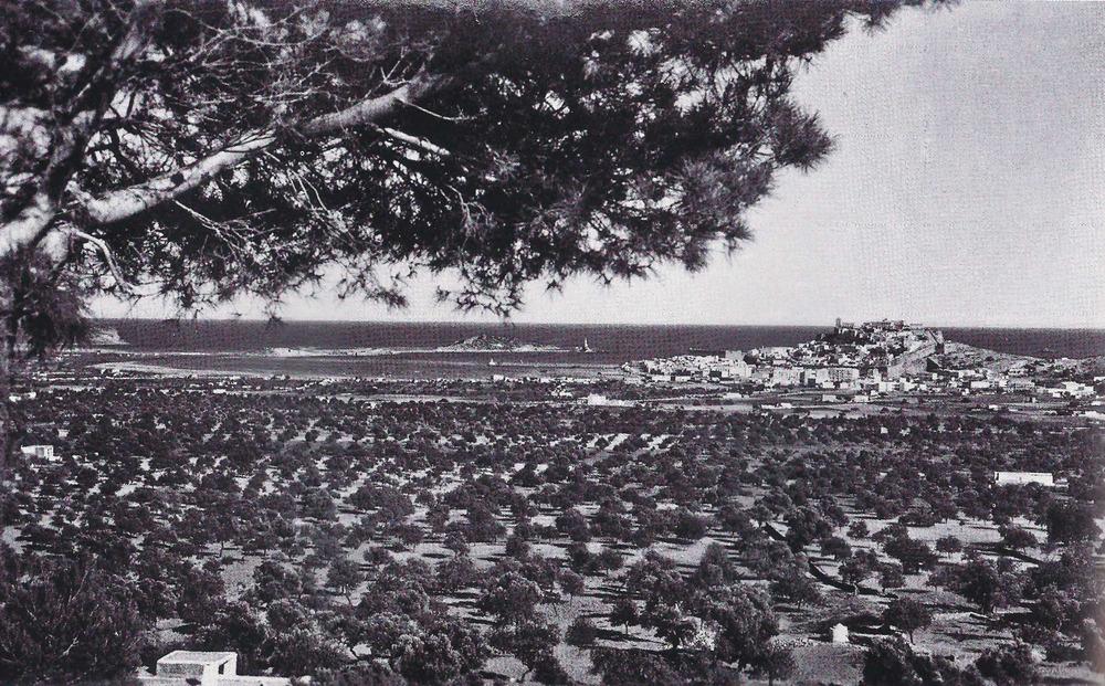El pla de Vila en una vista presa des del puig de na Ribes. Foto Viñets.