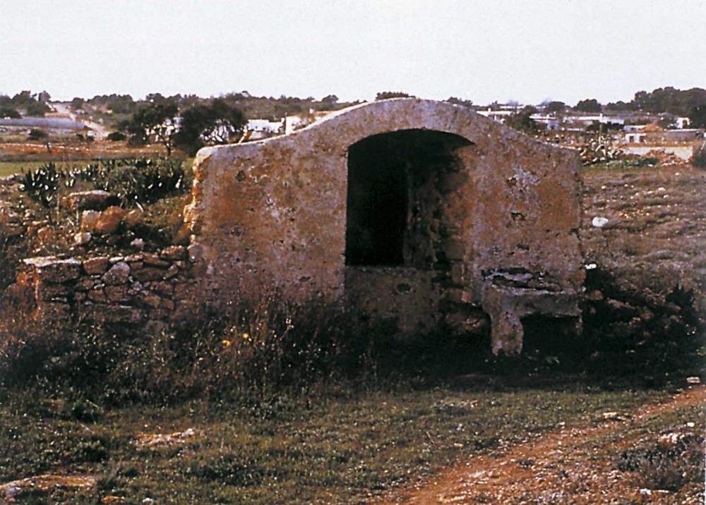 Aigua. Els pous formenterers abunden al paisatge de l´illa. Foto: Miquel Morey / <em>Guía de la naturaleza de Eivissa y Formentera.</em>