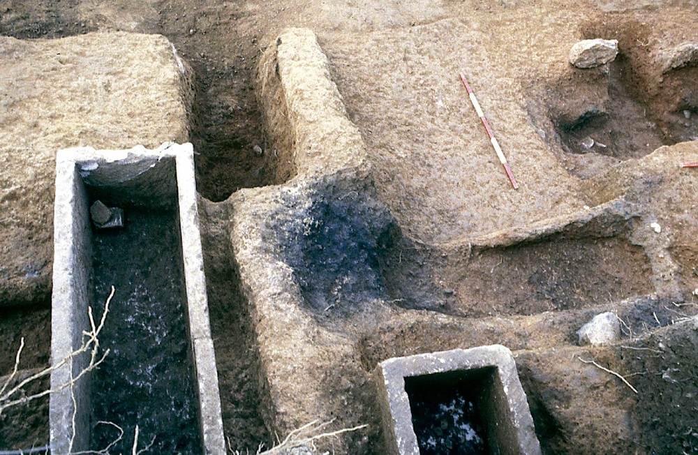 Arqueologia. Una excavació moderna. Solar 47 de la via Romana, que correspon a la necròpolis del puig des Molins. Foto: Joan Ramon Torres.