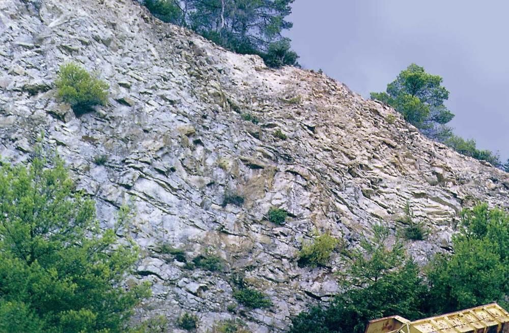 Calcàries kimmeridgianes, amb bona estratificació, amb separacions centimètriques margoses (pedrera de Can Xiquet Pou). Foto: Bartomeu Escandell Prats.