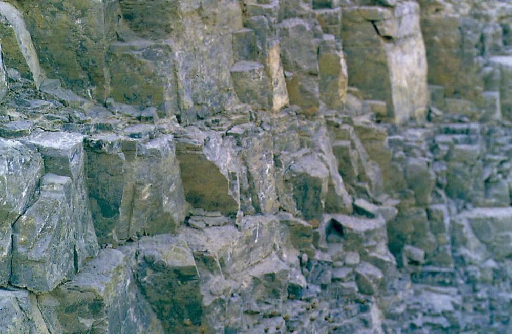 Calcàries i calcàries dolomítiques de color gris blavenc del muschelkalk, a sa Creu de Forada. Foto: Bartomeu Escandell Prats.