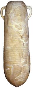 Àmfora púnica T-4.1.1.2, fabricada en un taller de Tunísia, trobada a Eivissa, en un jaciment desconegut. Esporàdica a Eivissa. Contengut: incert, <em>c.</em> 430-400 aC. E, 1:10. Foto: Joan Ramon Torres.