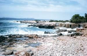 Ses Alfàbies, a la costa de Sant Antoni de Portmany. Foto: Enric Ribes i Marí.