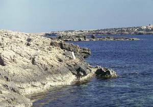 La punta de s´Alguer, a la part de ponent des Pujols, a Formentera. Foto: Enric Ribes i Marí.