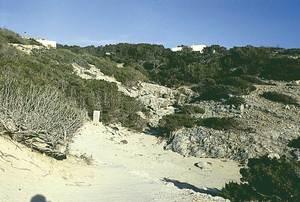 Tram final del torrent des Arbocers, a Formentera. Foto: Enric Ribes i Marí.