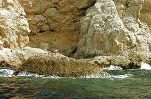 Sa Banyera, a la costa de migjorn del cap Nunó. Foto: Enric Ribes i Marí.