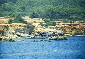 El penyal de Ca sa Jaia, a la costa des Pou des Lleó, a Sant Carles de Peralta. Foto: Enric Ribes i Marí.
