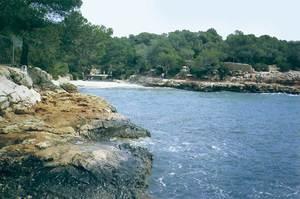 El portitxol de Cala Gració. Foto: Enric Ribes i Marí.