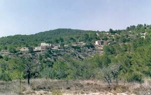 Les pallisses de Cala d´Hort. La pallissa d´en Ribes (a l´esquerra) i la pallissa d´en Sorà (a la dreta), que cau davant la necròpolis púnica. Foto: Joan Ramon Torres.