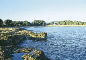 Sa Caleta, a la costa de Santa Eulària des Riu. Foto: Enric Ribes i Marí.