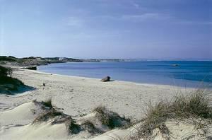 La platja des Canyers, a l´illa de Formentera. Foto: Enric Ribes i Marí.