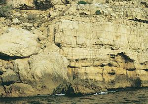 El mac des Carbó, a la costa de ponent de la cala d´Albarca. Foto: Enric Ribes i Marí.