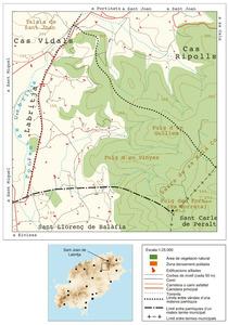 Mapa de la vénda de Cas Cavallers. Elaboració: UIB / Laboratori de Sistemes d´Informació Geogràfica / Josep Antoni Prats Serra.