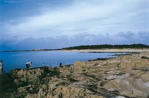 Es Cavall d´en Borràs, a la costa de tramuntana de Formentera. Foto: Enric Ribes i Marí.