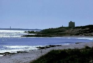 la platja des Cavallet. Foto: Enric Ribes i Marí.
