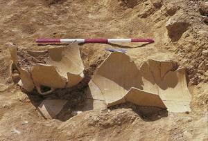 Una gran àmbora in situ al jaciment arqueològic des Clot de Baix. Foto: Rosa Gurrea Barricarte / Joan Ramon Torres.
