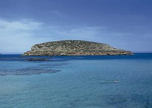L´illa des Bosc. La punta de sa Cova des Porcs és a l´esquerra de la imatge. Foto: Enric Ribes i Marí.