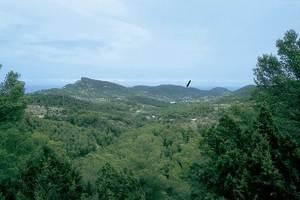 Fotografia de situació de la cova des Culleram feta des de la carretera de Sant Joan a sa Cala. Foto: Joan Ramon Torres.