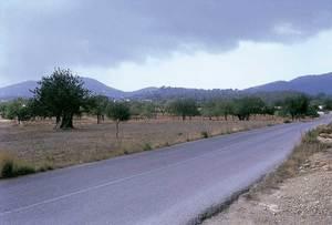 La vénda de Davall sa Serra amb la carretera que mena a Porroig en primer terme. Foto: Josep Antoni Prats Serra / Enric Ribes i Marí.